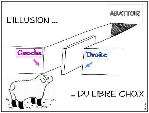 gauche_drote_mouton_abbatoir_election.jp