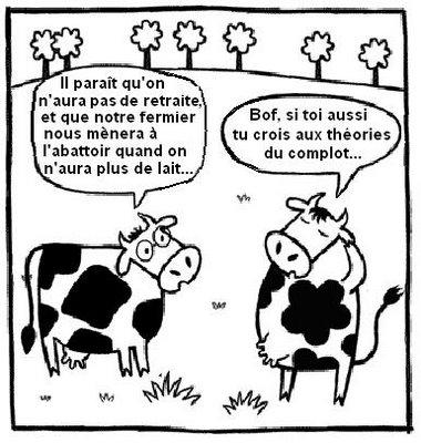 vaches-a-lait.jpg
