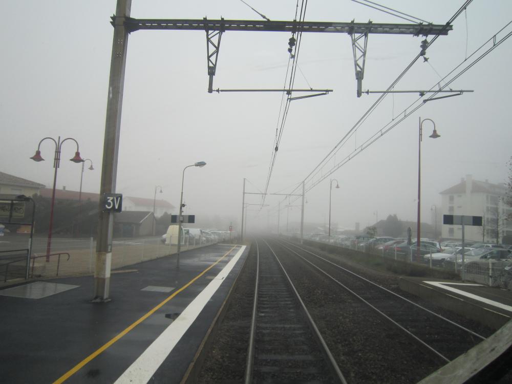 Brouillard.thumb.JPG.982659e69e27e7eb186