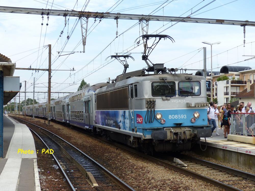 P1130892.JPG