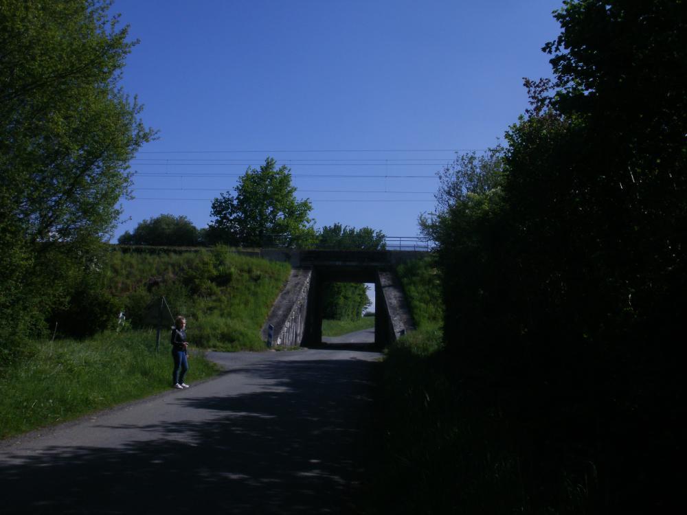la ligne Le Mans - Laval un peu avant la jonction avec la ligne Mayenne - La Chapelle Anthenaise.JPG