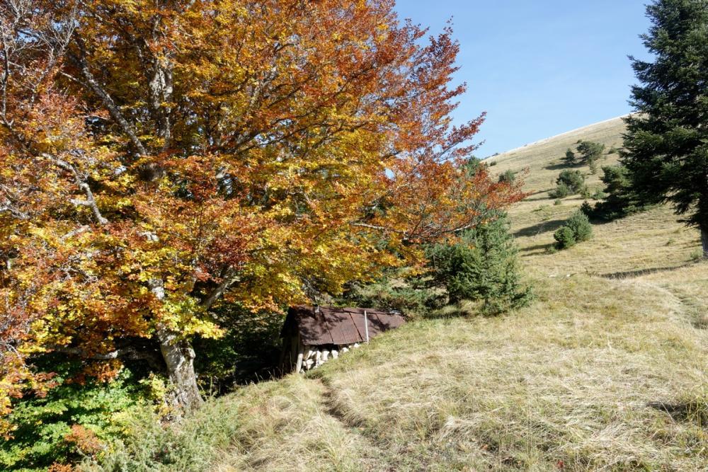 09-28 Chichilianne - le Platary (4).jpg