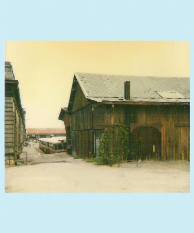 Halle en bois (extrait du coin NE).jpg
