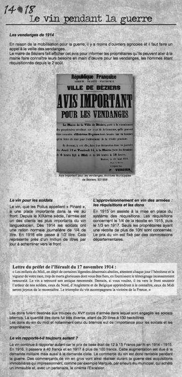 2051152547_2015_Expo_Beziers_une_ville_de_l_arriere_448107.thumb.jpg.bdbfb02dd1212f5251bd26e8d6a68784.jpg