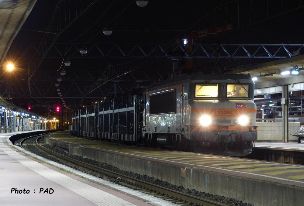 P1560332.JPG
