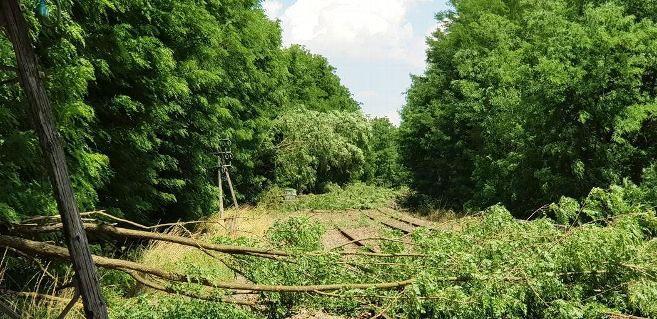 rail-entre-cercy-la-tour-et-etang-sur-arroux-apres-orage_4407146.jpeg.1073ffe6a8cc080c2c4093fd1b848039.jpeg
