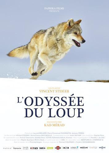 Affiche L'odyssée du loup .jpeg