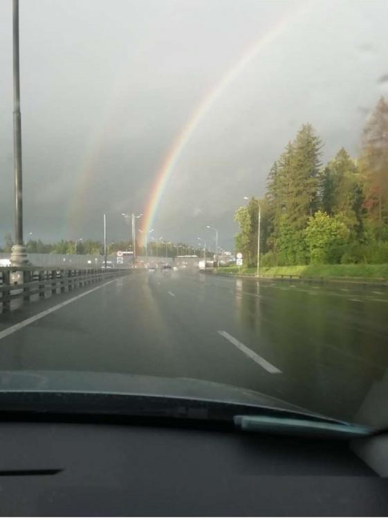 дождливое лето.jpg